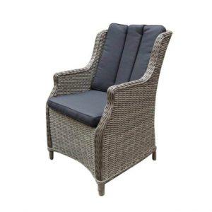 Darwin natural kobo grey + royal dark grey dining stoel