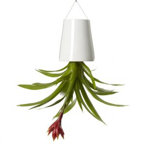 Boskke Sky Planter Ceramic medium | Wit - Bloempot