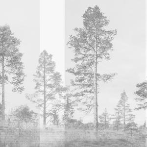 Panorama digitaal behang grijs