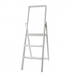Step ladder wit