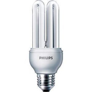 Philips Genie ESaver 18W 865 E27 | Daglicht